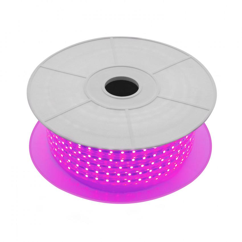 LED-Streifenrolle Dimmbar 220V AC 60 LED/m 50m Violett IP65 Schnitt jede 100cm