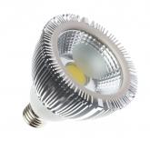 PAR30 7W COB LED Lamp